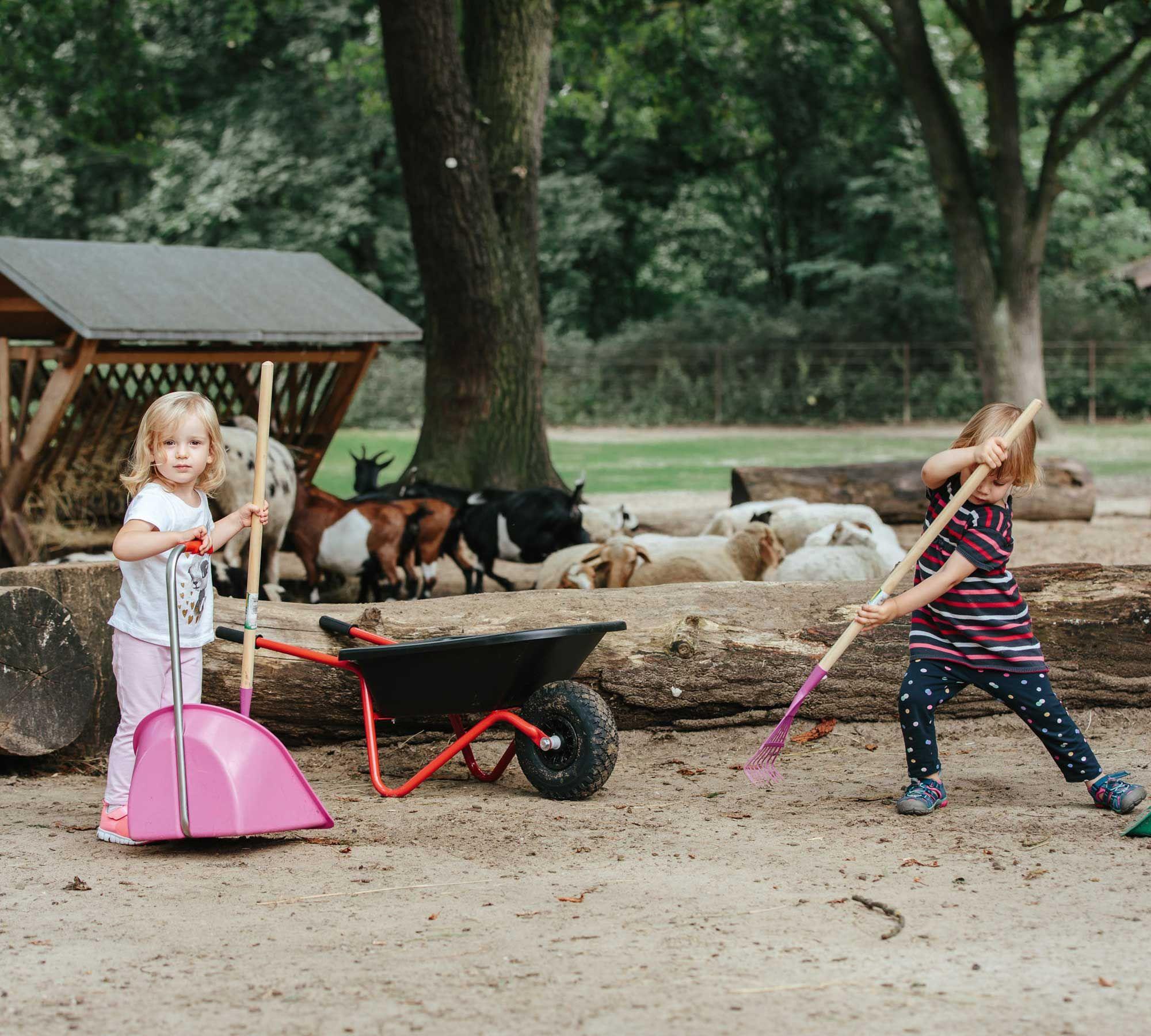 Geburtstagstipps für KitaKinder Kinderwagen, Kinder, Geburt