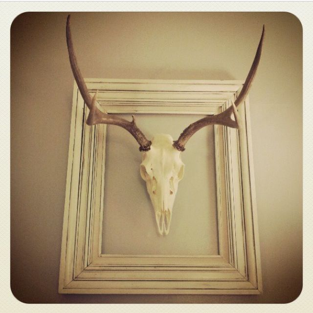 Decorating with my hubbies Hunt | New summer cottage | Pinterest ...