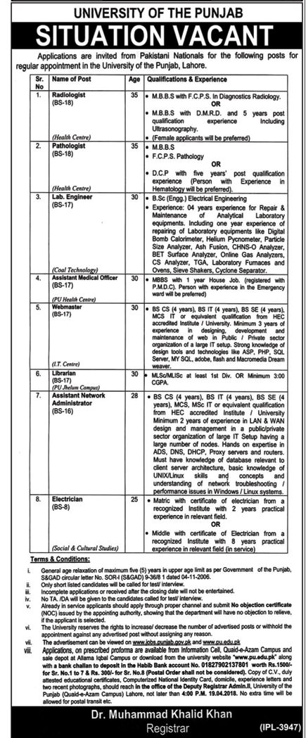 University Of The Punjab Jobs  In Lahore For Medical Officer