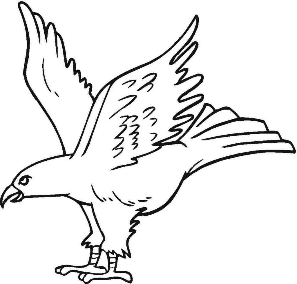 Eagle Coloring Pages To Print | native american indian | Pinterest ...