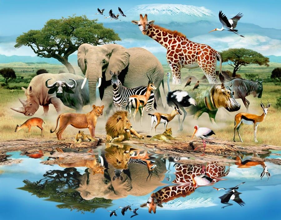 African Savanna Watering Hole Pets Lovers