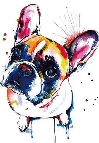 Französische Bulldogge 150x210mm Französische bulldoggen