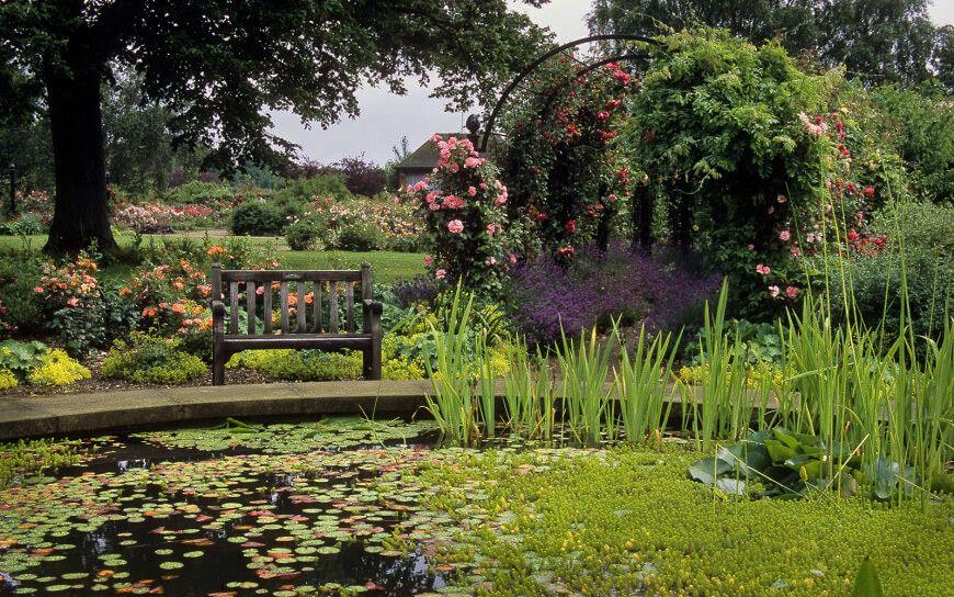 Rose Garden Beautiful gardens, Pretty gardens, Modern