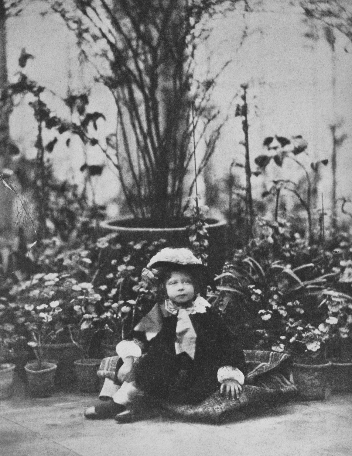 Prince Leopold, 1857 [in Portraits of Royal Children Vol.2 1855-1858] | Royal Collection Trust