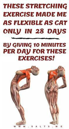 Well without wasting time let me reveal the five most effective stretching exercises with you. These exercises will make you as flexible as a cat in one month if you follow them with full of determination. The most important thing about these stretching exercises is to perform them correctly. #exercise #health #life