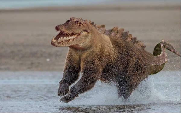 El feroz oso cocodrilo