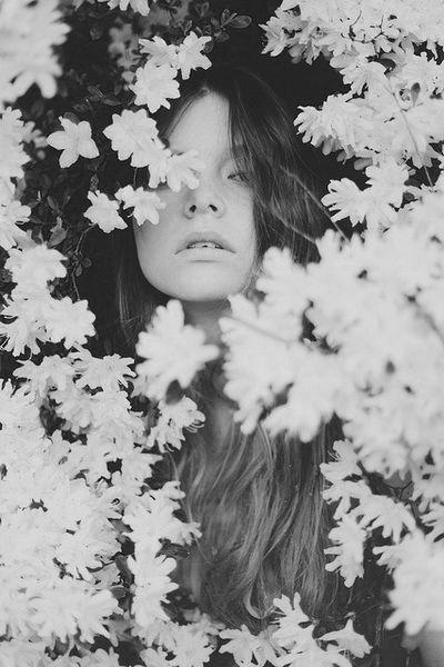 #Inspiration #Garden #Daisies #Floral #Summer #BiographyTrend #Aurora #BiographyCollection #Biography