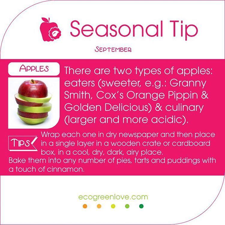 #September #Foodtip 01 Apples time! - - - #inseason #seasonal #food #kitchentip #lifehack