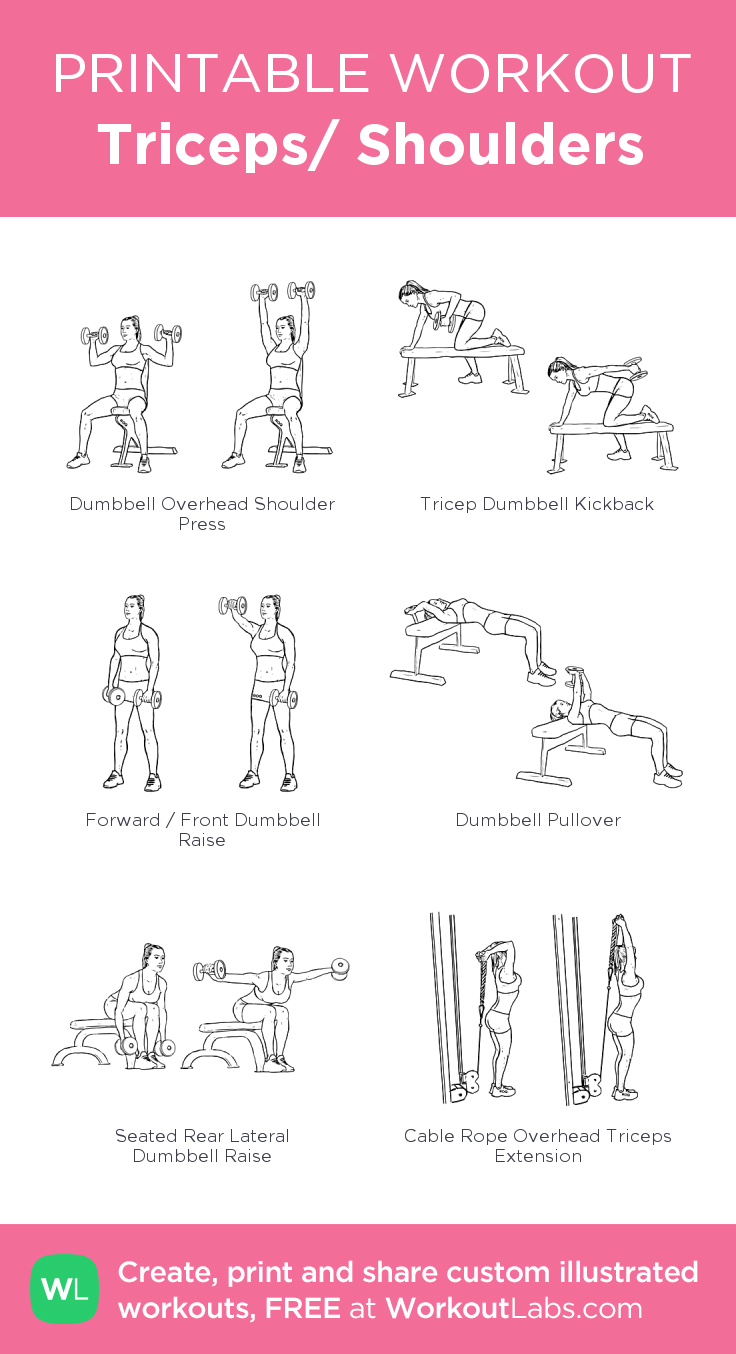 Triceps/ Shoulders: my visual workout created at WorkoutLabs.com ...