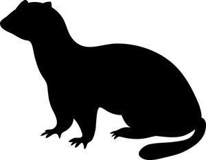 ferret clip art ferret pinterest ferret clip art and clipart rh pinterest co uk black footed ferret clipart