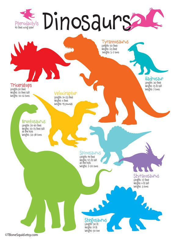 Dinosaur Nursery Art for boys, Dinosaur Poster