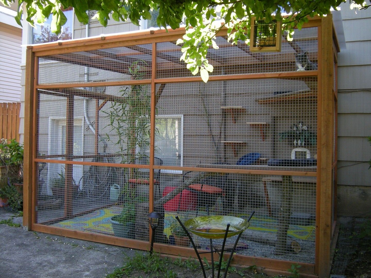 Phenomenal Pin By Animal News On Cats Outdoor Cat Enclosure Diy Cat Home Interior And Landscaping Analalmasignezvosmurscom