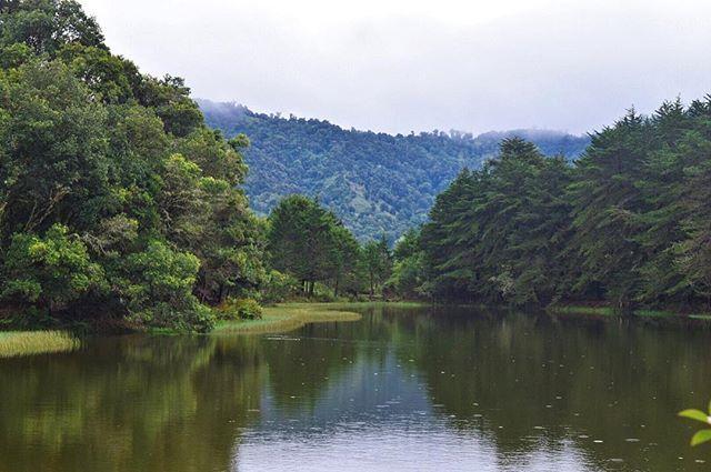 WEBSTA @ sempi_terno - Una laguna entre montañas y bosques, el rodearla lleva…