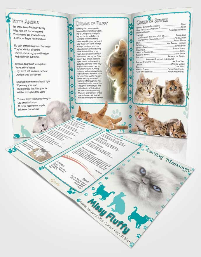 Obituary Template Trifold Brochure Turquoise Fluffy Cat  Obituary