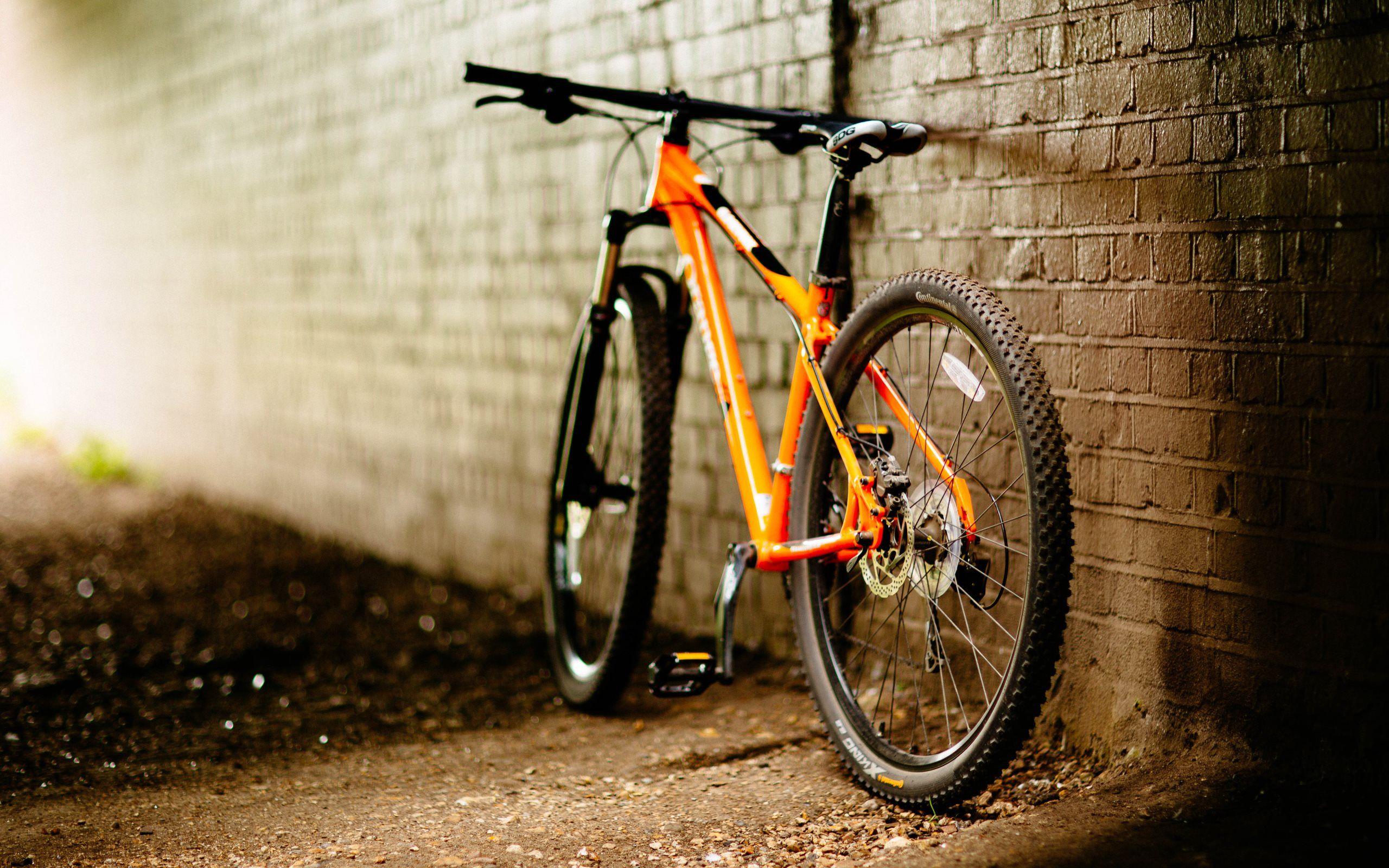 Mtb Desktop Wallpaper Google Search Bianchi Bicicletas Planos