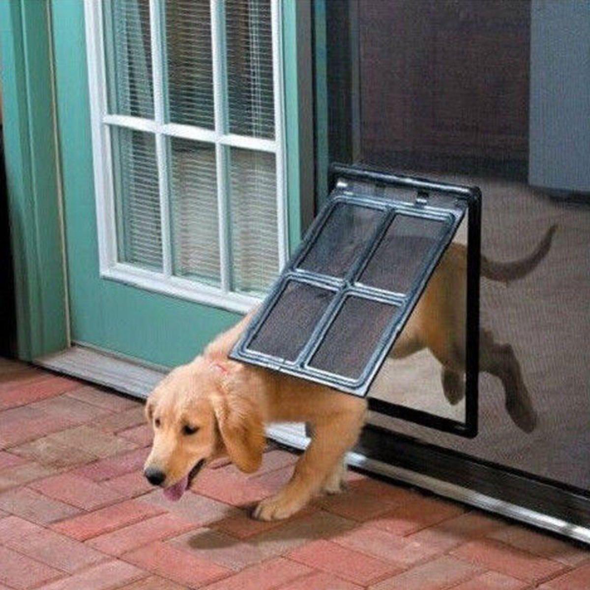 Dog Cat Pet Large Screen Door 2 Way Flap Lock Gate Way For Window