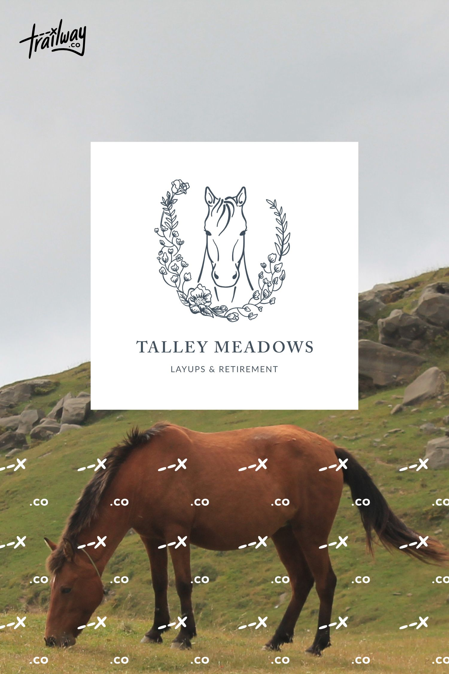 Equestrian Brand Design for Southern California Business