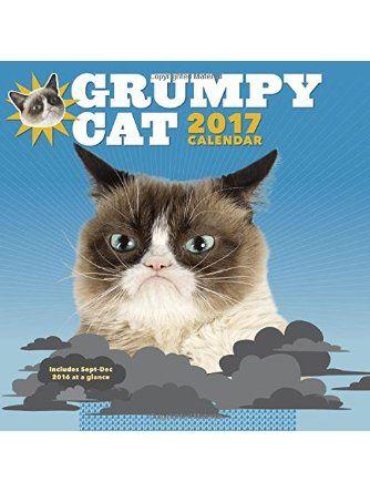 Grumpy Cat 2017 Wall Calendar Chronicle Books Grumpy Cat Cat Calendar Cat Lovers