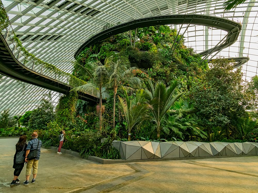 A Botanical Walk Around The Flower Dome And Cloud Forest At Gardens By The Bay Singapore Gardens By The Bay Singapore Travel Cost