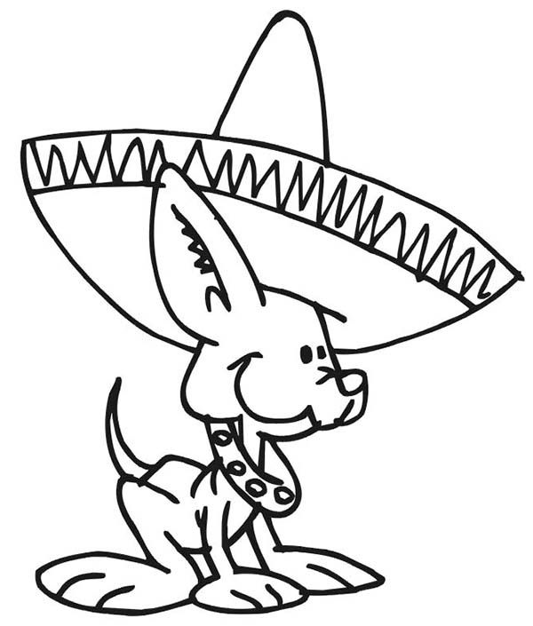 Dogs Cute Little Dog Wearing Mexican Hat Coloring Page Images