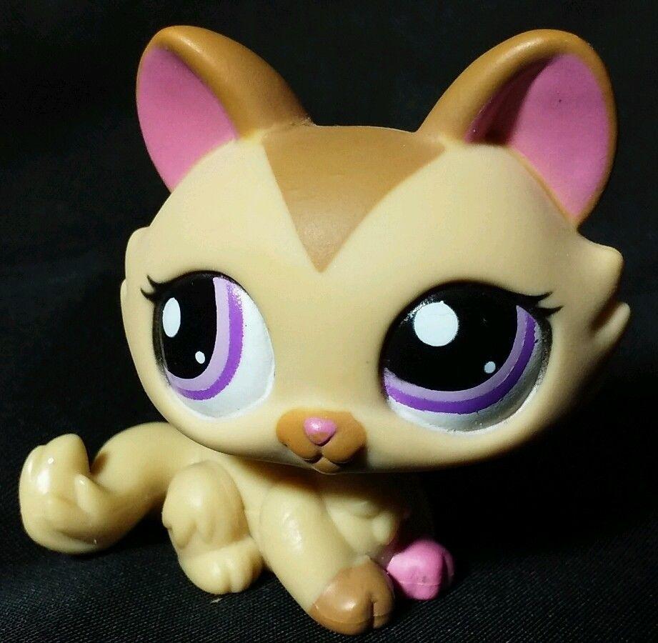Littlest Pet Shop Tan/Brown Crouching Kitty Cat Purple
