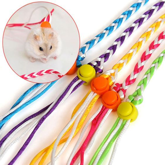 Colorful small animal pet leash rope 140200cm long adjustable rat colorful small animal pet leash rope 140200cm long adjustable rat gerbil hamster guinea pig leash publicscrutiny Image collections
