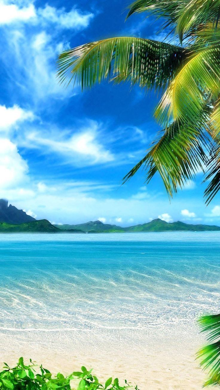 Pin By Kevin Milinkevich On Nature S Beauty In 2020 Nature Pictures Beach Wallpaper Beautiful Nature