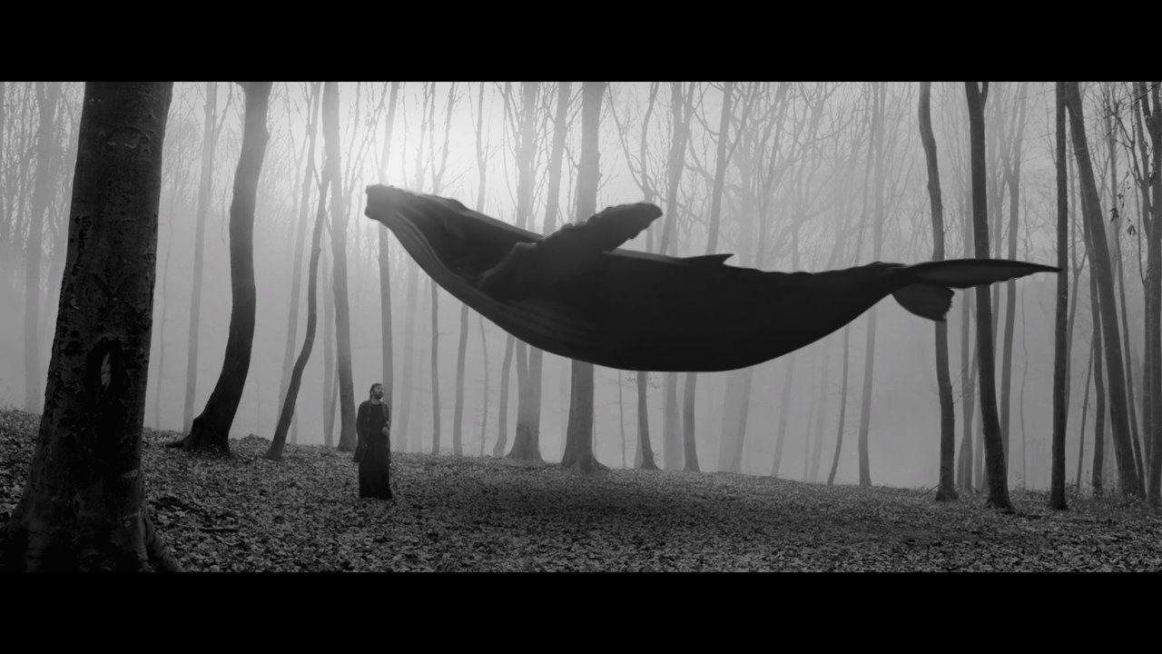 Halil Sezai 'Garip'. Director: Turgut Akaçık - http://www.turgutakacik.com Production: Autonomy Film House - http://www.autonomy.com.tr Prod...