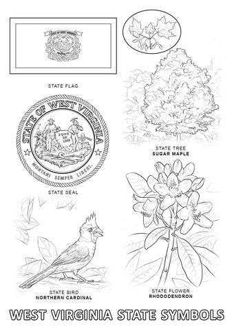 virginia state map coloring pages | West Virginia State Symbols Coloring page in 2019 | Flag ...