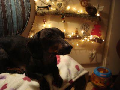 Christmas Maggie Bug:  http://maggiebug.blogspot.com
