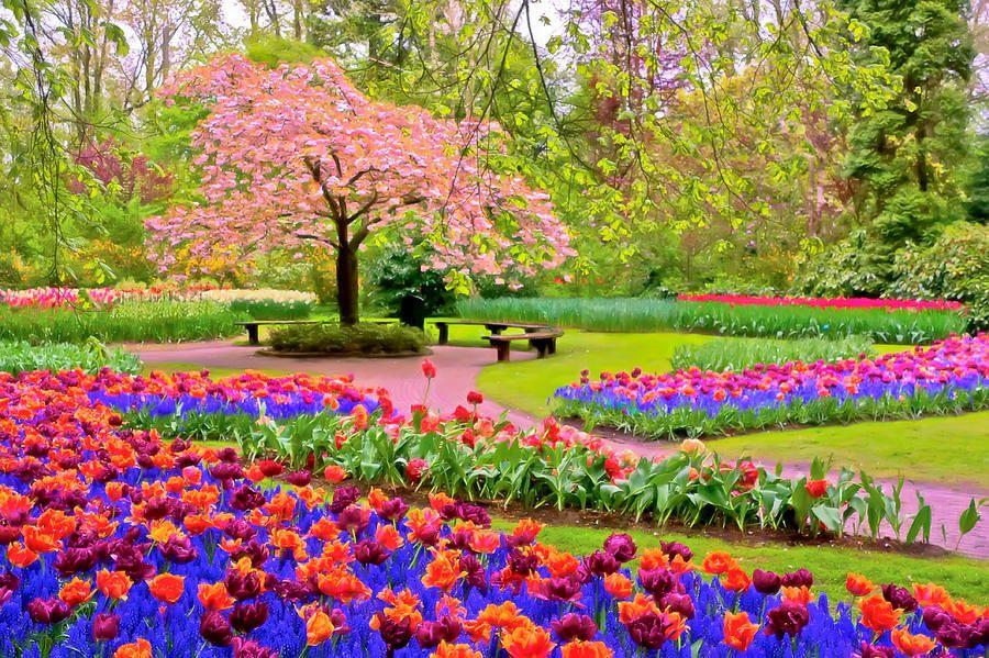 Spring Season Spring pictures, Spring wallpaper, Spring