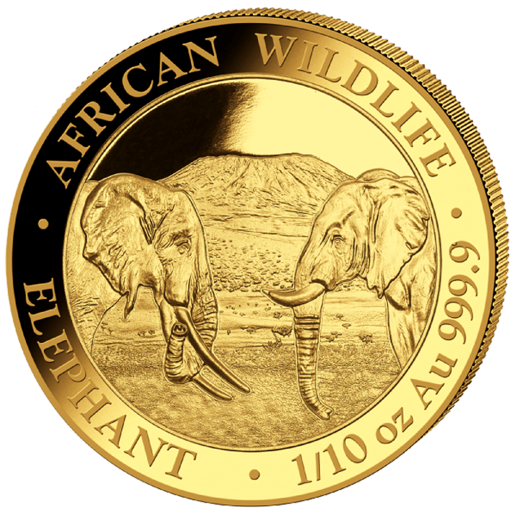 Elefant 1 10 Oz African Wildlife 2020 African Wildlife In 2020 African Elephant African Wildlife Elephant