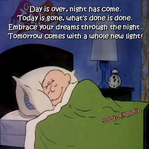 Day Is Over Night Has Come Today Is Gone What S Done Is Done Embarace Your Dreams Throught The Night Tomorrow Snoopy Quotes Words Inspirational Quotes