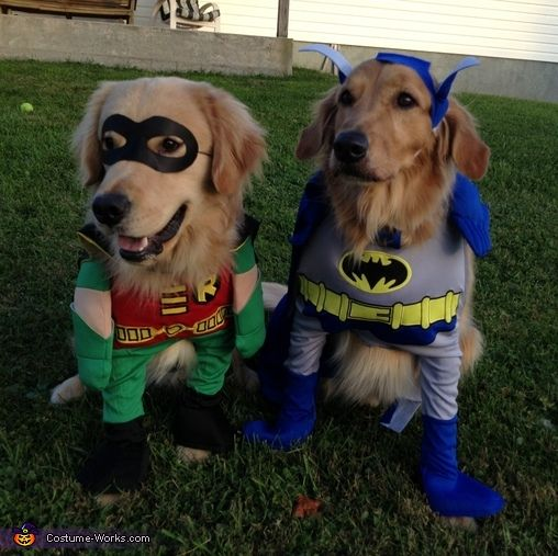Batman And Robin Halloween Costume Contest At Costume Works Com