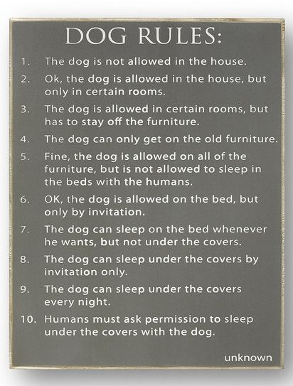 I Need This Sign Does Your Dog Rule Your House Dog Rules