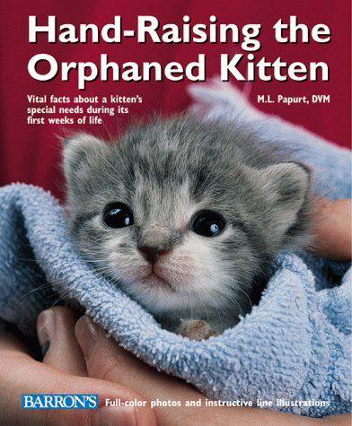 Hand Raising The Orphaned Kitten By M L Papurt Http Www Amazon