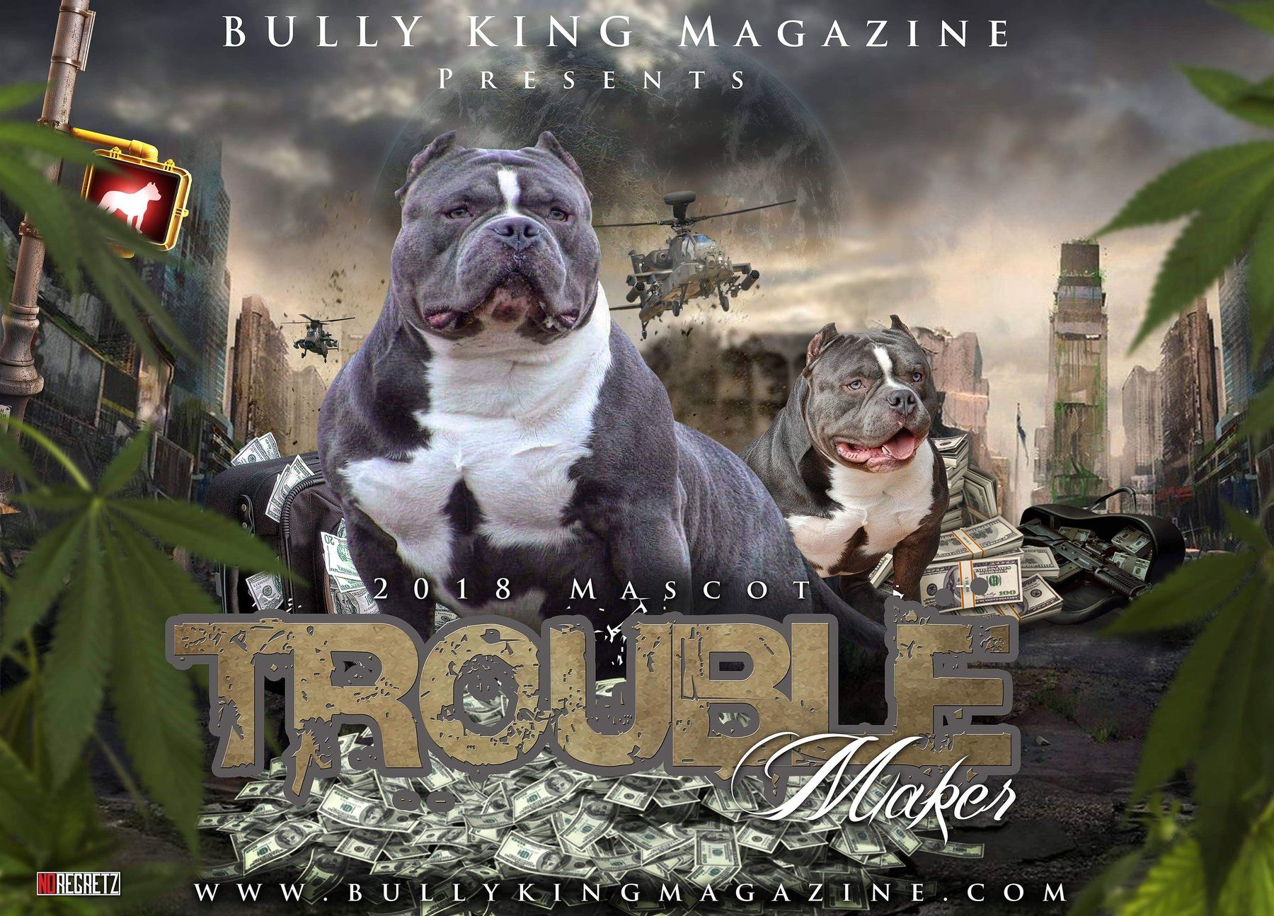 BULLY KING Magazine | The #1 American Bully Magazine | News