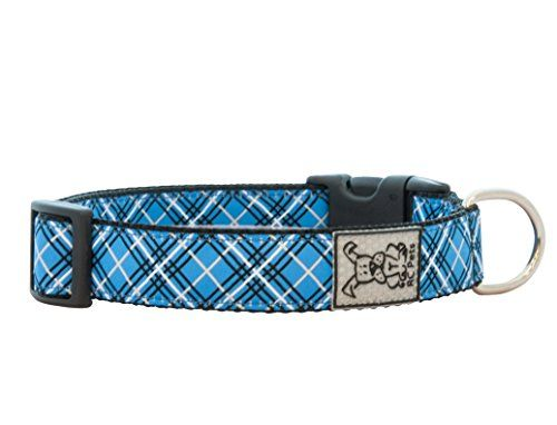 RC Pet Products 1Inch Adjustable Dog Collar Large Blue