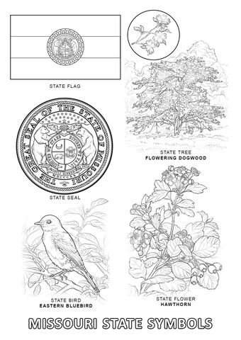 Missouri State Symbols coloring page from Missouri