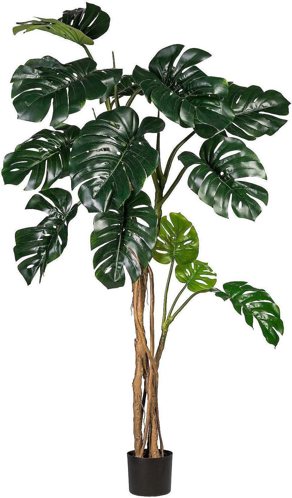 Kunstpflanze »Splitphilodendron« auf Rechnung bestellen ...
