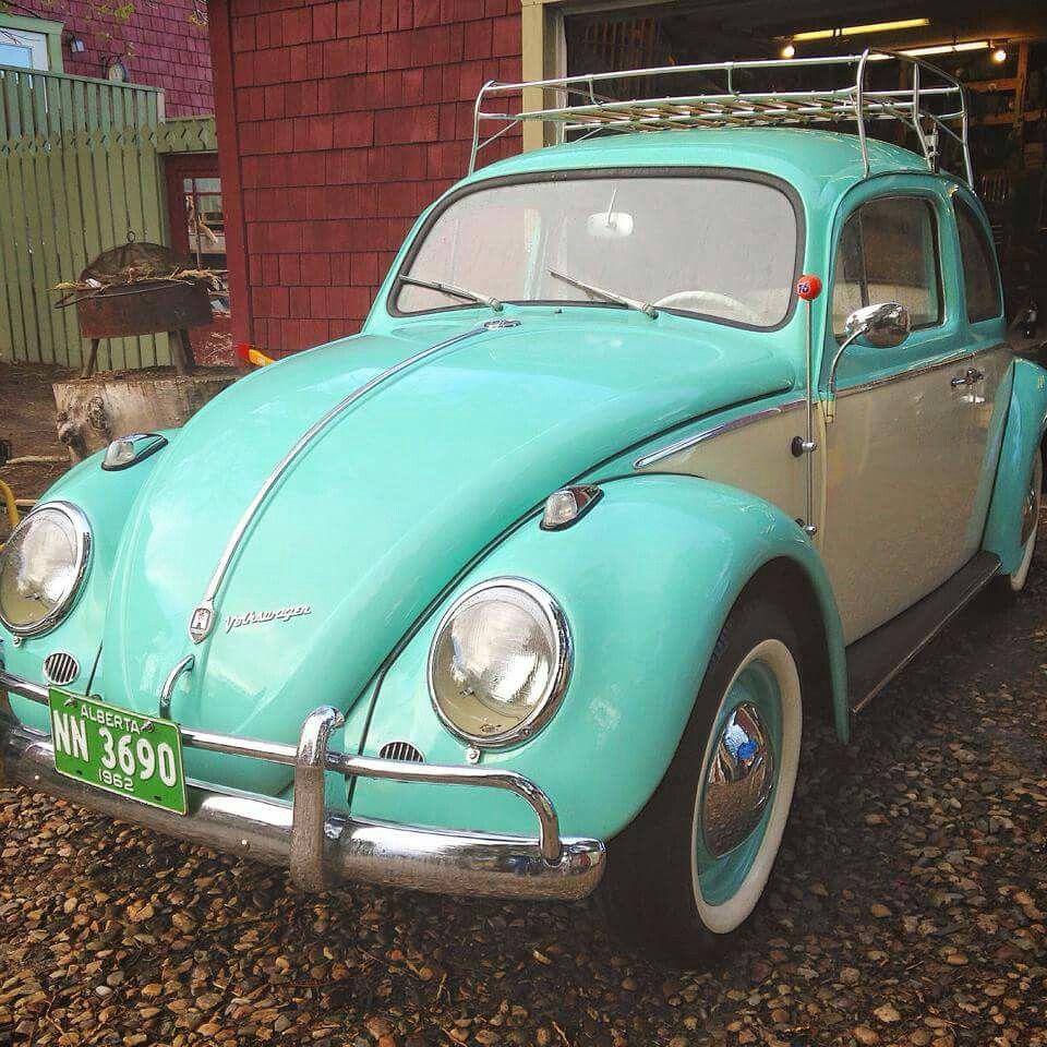 VW BEETLE Cute cars, Vw beetles, Country girl life