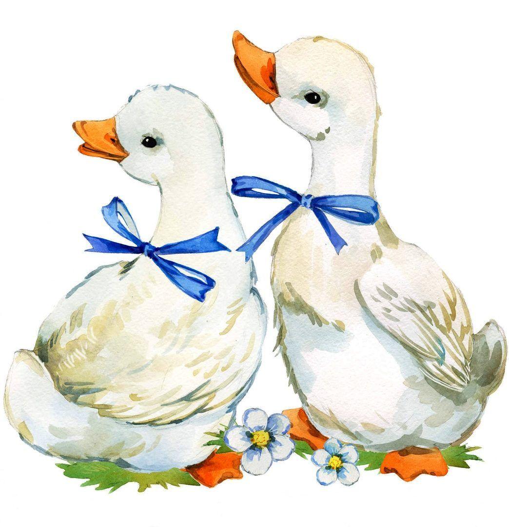 Привет, открытки гуси