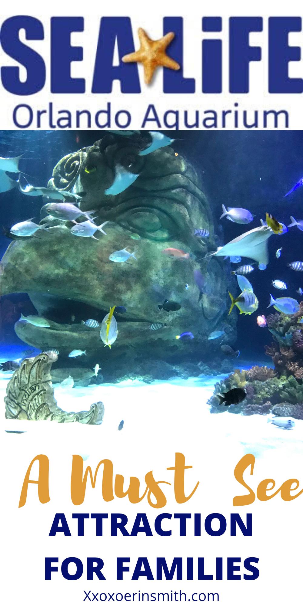 Sea Life Aquarium: Indoor Family Activity in Orlando ...