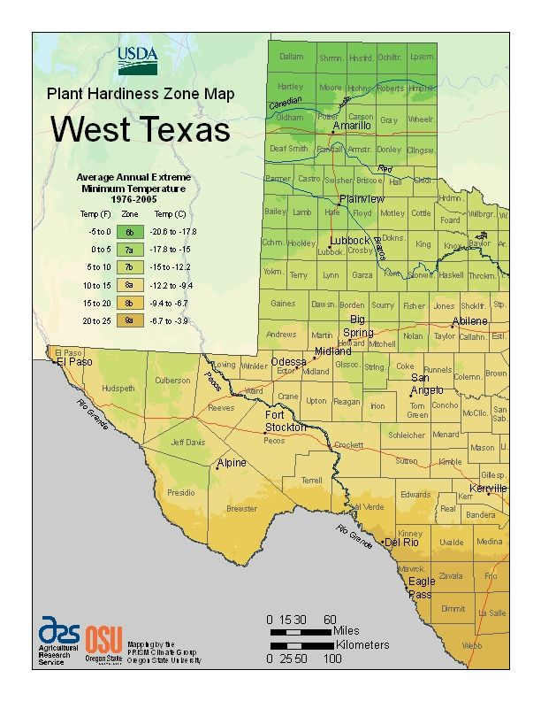 USDA Plant Hardiness Zone Map for West Texas | My home | Pinterest ...