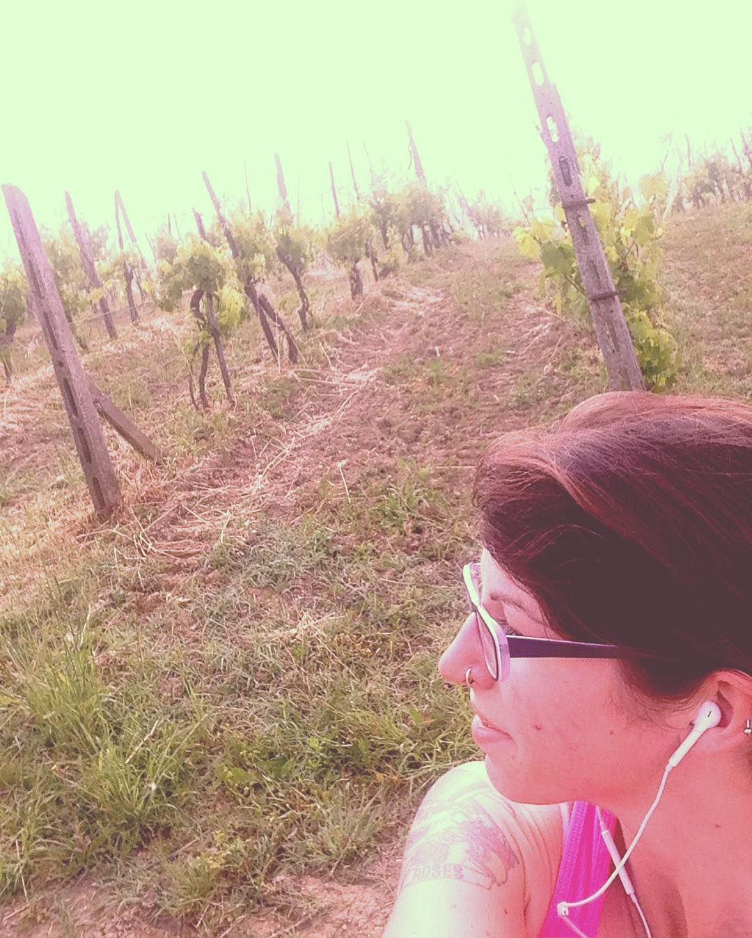 Oggi corsetta su e giù tra nebbia e vigneti. #corsa #running #run #vigne #vigneti #nebbia #fog #wine #tuscany #collinesenesi #siena #colline #suegiù #chefatica #altrochesquat #corsetta #fitness #wellness #beautifulplace #restoqui #selfie by beafransje