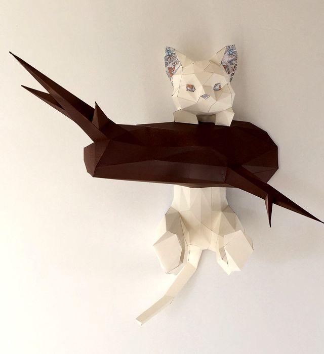 Hanging kitten | Pinterest | 3d, Propios y Plantas