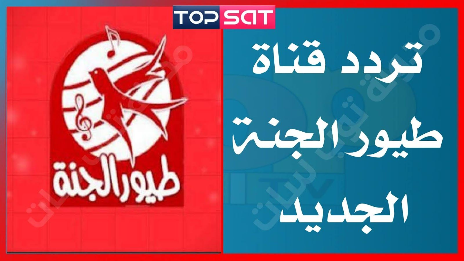 تردد قناة طيور الجنة على النايل سات Toyor Al Janah على جميع الأقمار آخر تحديث 2020 Places To Visit Calm Artwork Keep Calm Artwork