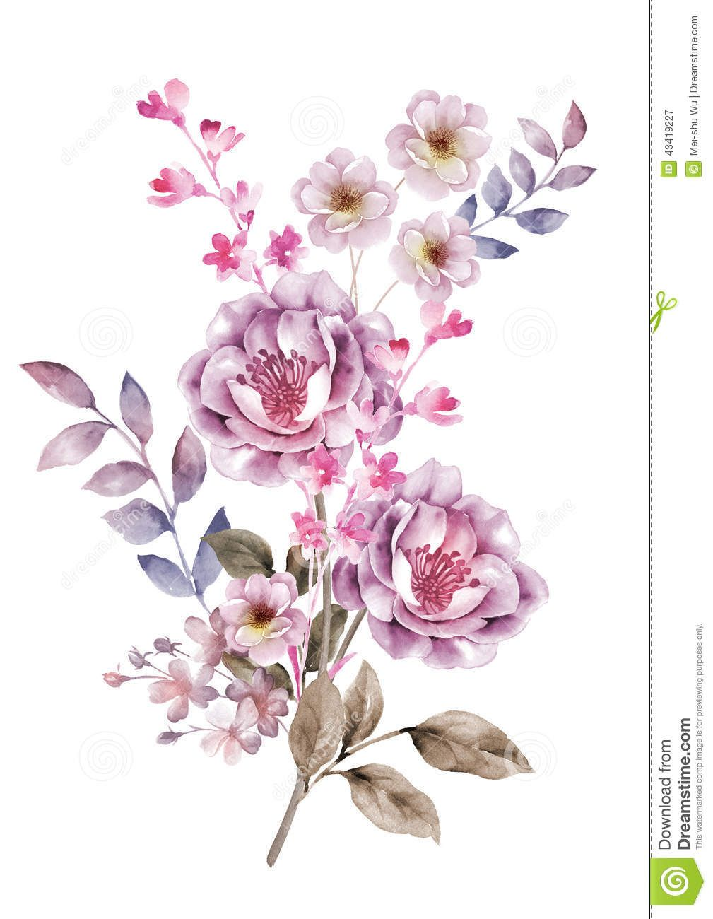 Watercolor illustration flower in simple background - High resolution watercolor flowers ...