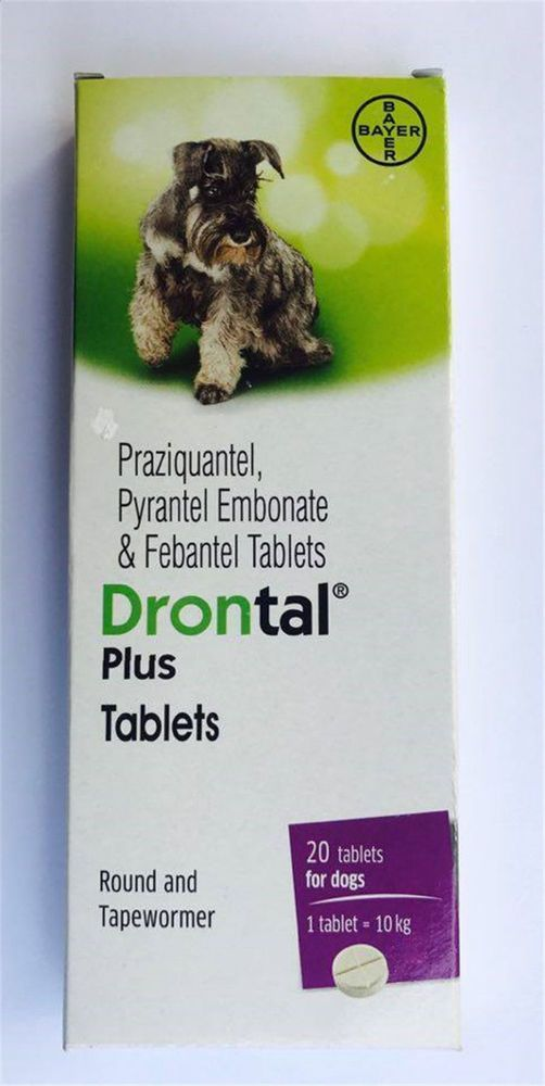 Bayer Drontal Plus For Dog Tablet Dewormer Allworms Round And Tap Worm Health Bayerdrontalplus Pet Supplies Plus Online Pet Supplies Dogs