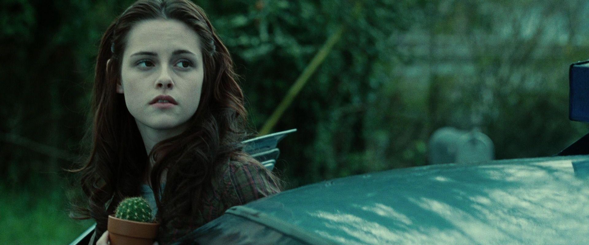 Pin By Ashley Harper On Films Twilight Scenes Twilight Photos Twilight Movie